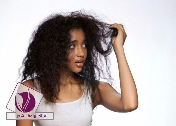 hair-translant-2